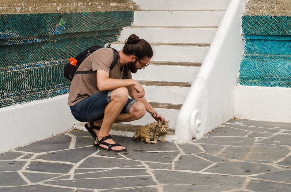 petting a temple cat