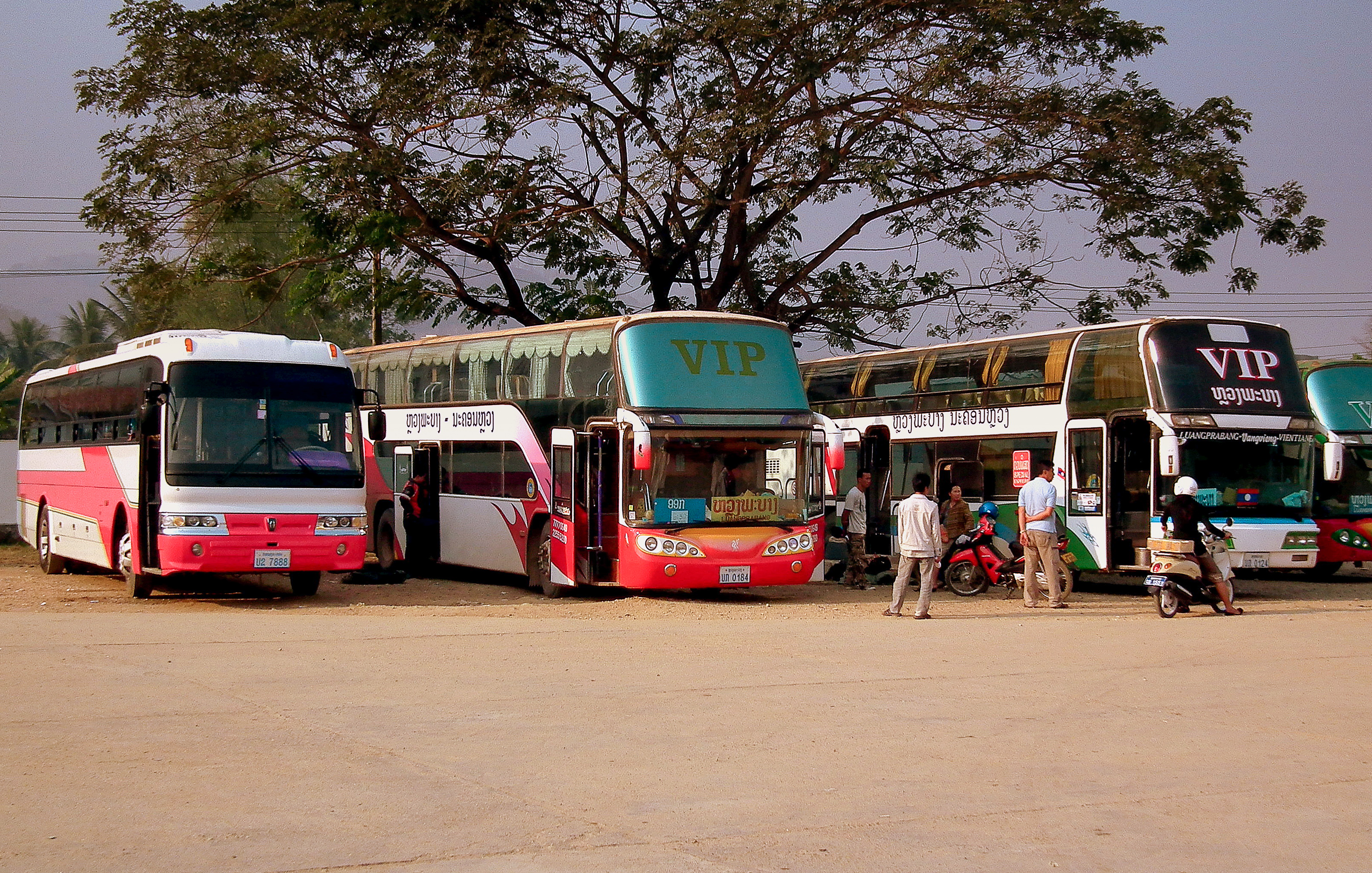 Vip bus in Luang Prabang Bus Station