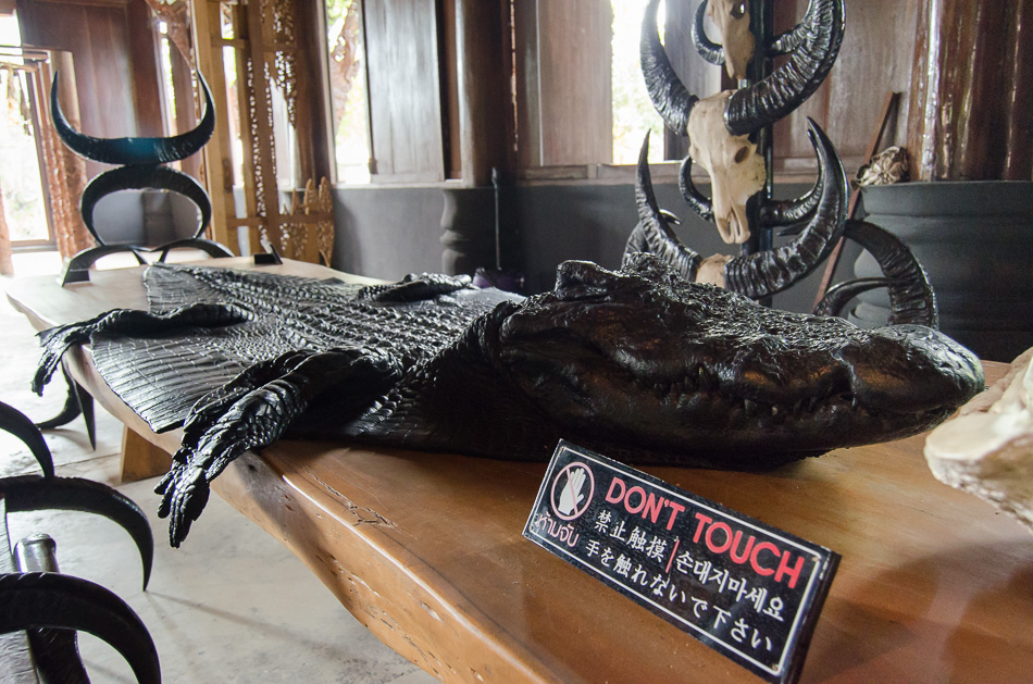 Animal skins in Baan Dam
