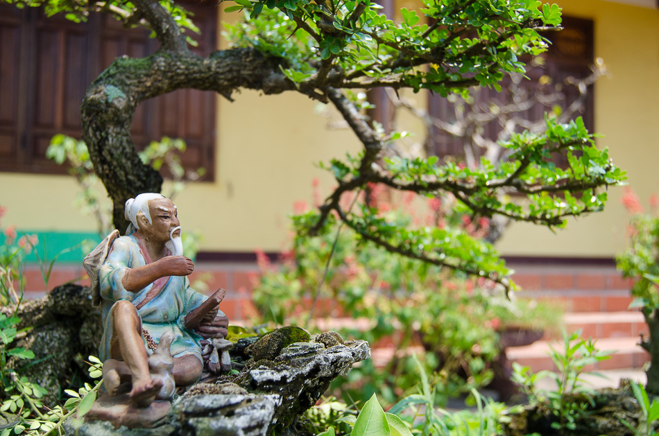 Bonsai and tiny statue