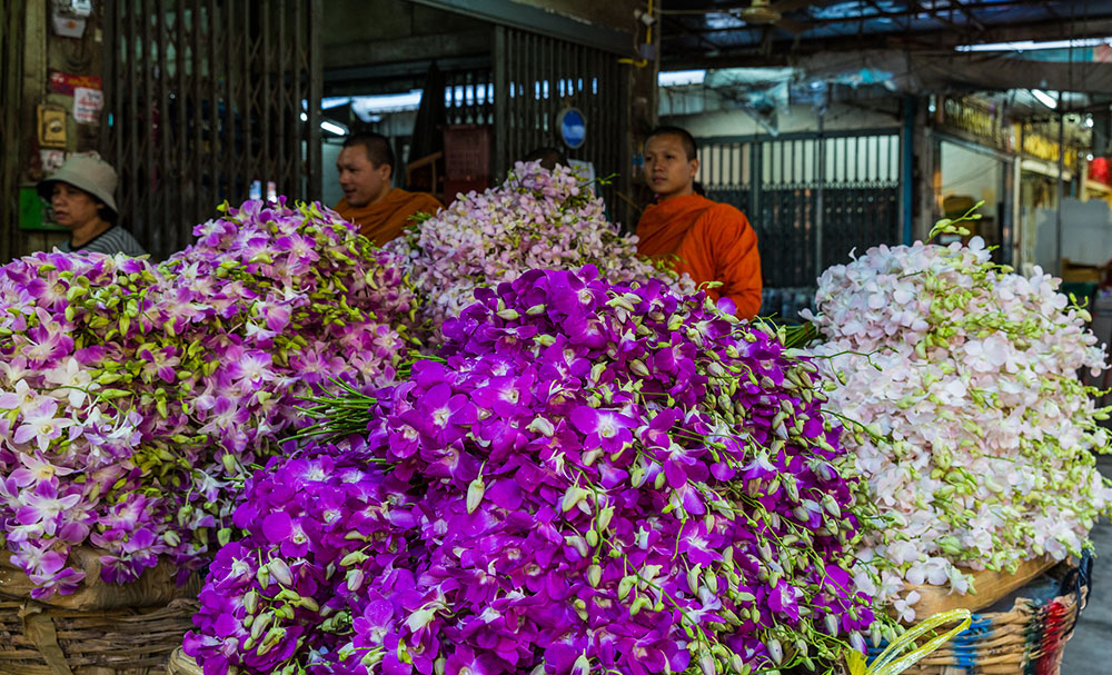 Orchids at Pak Klong Talad Flower Market